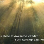 I will worship You, my God